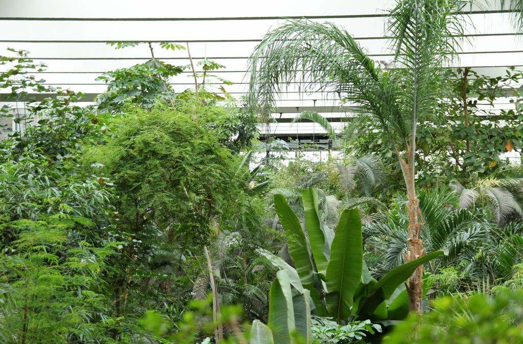 Die Halle der Biosphäre Potsdam