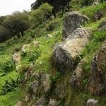 Bergsteigen und Wandern auf Rhodos