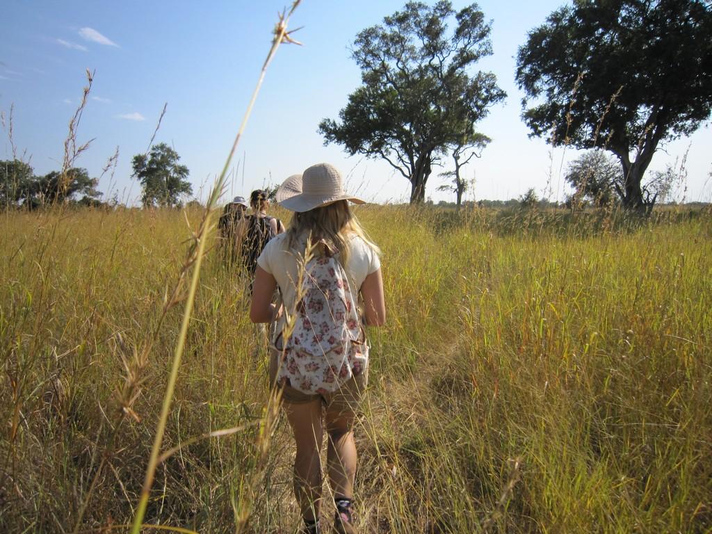 Fuß- Safari im Okavango Delta