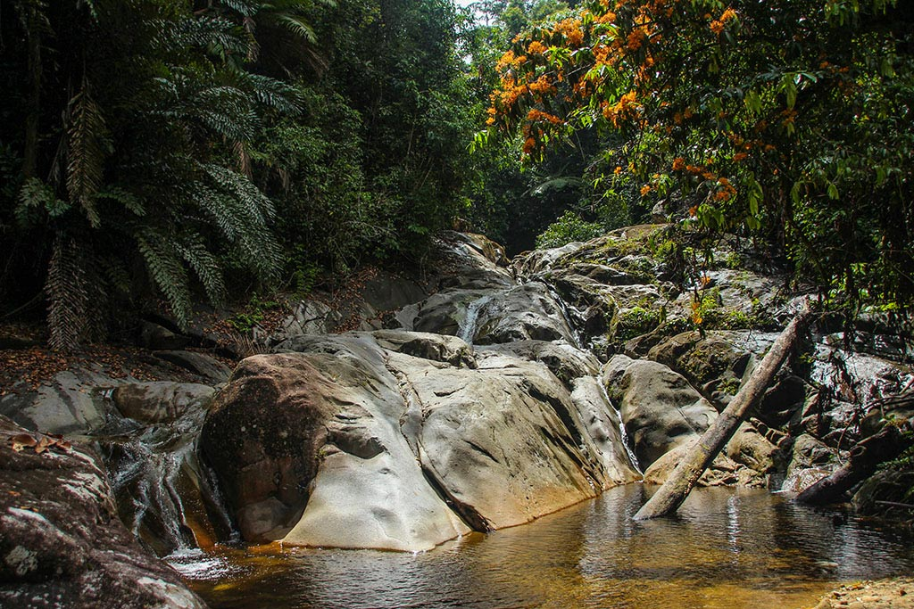 Die Gegend rund um den Wasserfall ist ein hervorragender Ort für ein Picknick