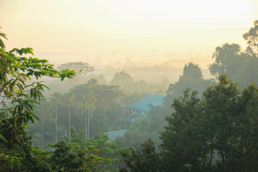 Sonnenaufgang über Sepilok - eine bezaubernde Stimmung