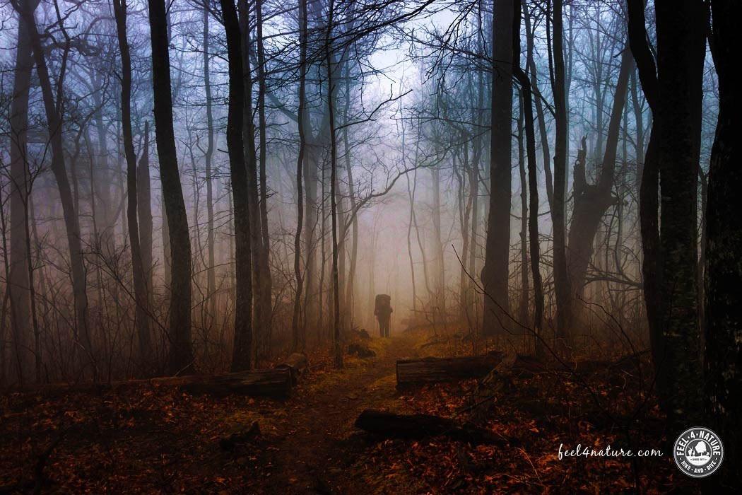 In der Natur, z.B. im Wald, fühlt sich Christian am wohlsten