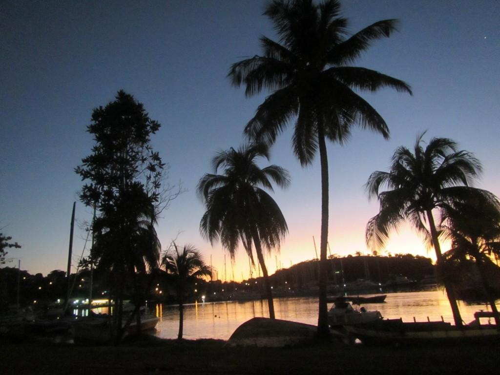 Ein Traum unter Palmen oder? (Foto: Sheila Rietscher)