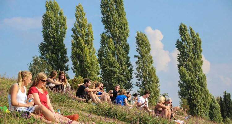 Sommer im Mauerpark