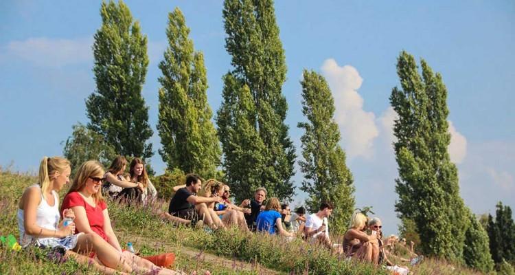Sommer im Mauerpark