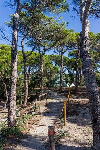 Camping auf sardinien tipps f r deine campingreise auf for Campingplatze sardinien